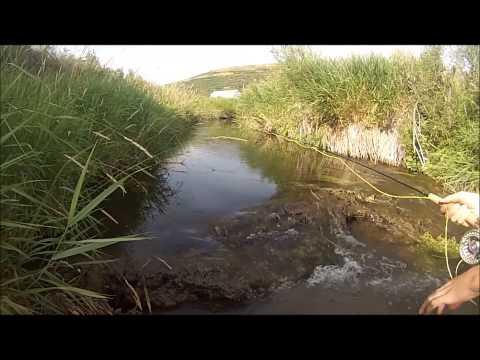 Fly fishing otter creek youtube for Otter creek fishing report