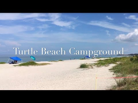 Turtle Beach Campground Tour & Review