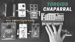 Toroids - Chaparral (dark ambient/drone - live session)