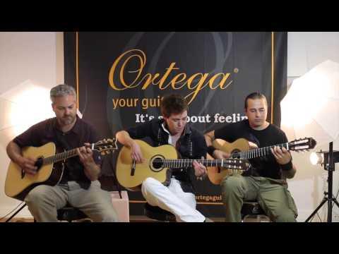 Dance Of Death (Iron Maiden) Acoustic - Master Guitar Tour