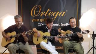 Dance Of Death (Iron Maiden) Acoustic - Thomas Zwijsen, Ben Woods & Glenn Roth (Master Guitar Tour)
