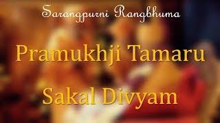 Pramukhji Tamaru Sakal Divyam    Sarangpurni Rangbhuma    Baps
