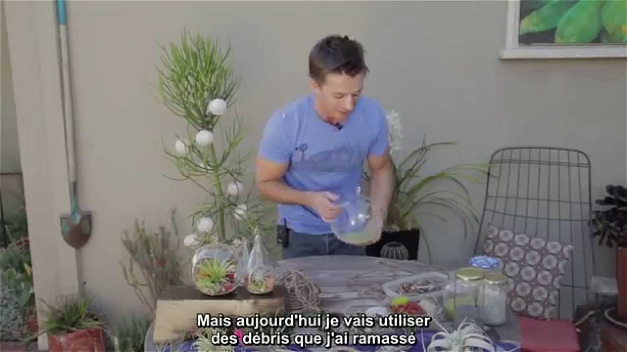 terrarium filles de l 39 air et entretien tillandsias urban dirt tv 2 5 vostfr youtube. Black Bedroom Furniture Sets. Home Design Ideas