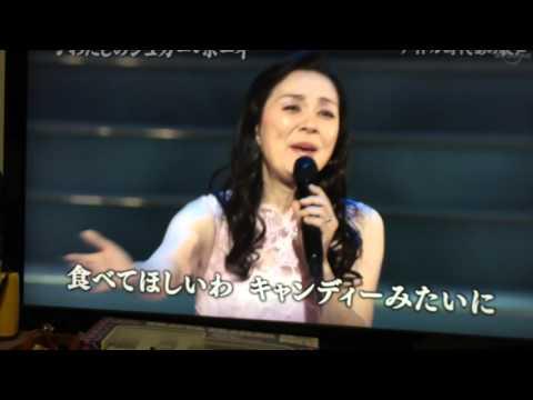 目黒ひとみ 2015年日本歌手協会主催「新春歌謡祭」わたしのシュガーボーイ