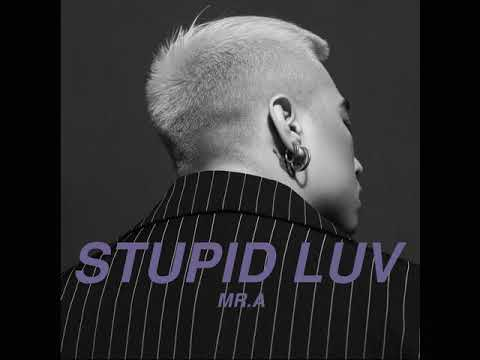 MR.A – STUPID LUV