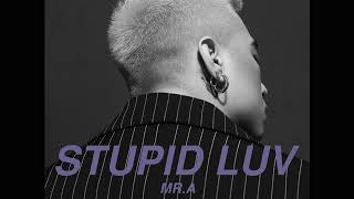 MR.A - STUPID LUV (OFFICIAL AUDIO)