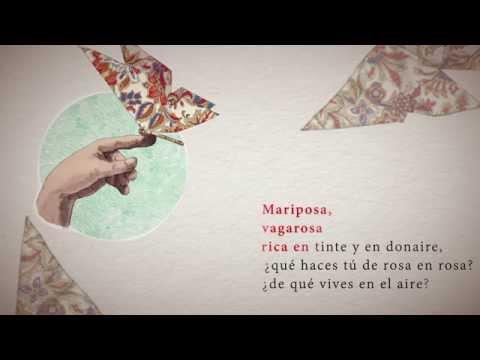 CUENTOS NARRADOS: El niño y la mariposa - Rafael Pombo