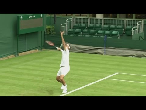 Wimbledon: The Beginner's Guide