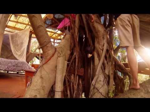 Treehouse Party Manoa || Hawaii || IIE