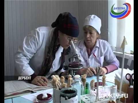 Вирус гепатита В / Вирусные гепатиты / Инфекции