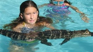 Zoo Renting Out LIVE ALLIGATORS - For Children s Parties!