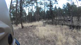 Operation Internal Threat, Ruidoso New Mexico