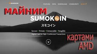 Майнинг Монеро картами AMD: майним SUMO. Часть 21