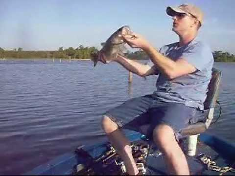 Good old country boy fishing bobber and minnow on big sam for Fishing sam rayburn