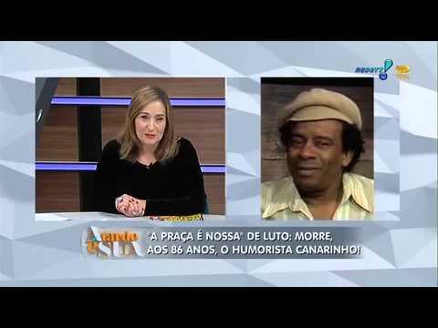 A Tarde é Sua 21/03/2014 - Carinhos Aguiar Fala  Sobre O Amigo Canarinho
