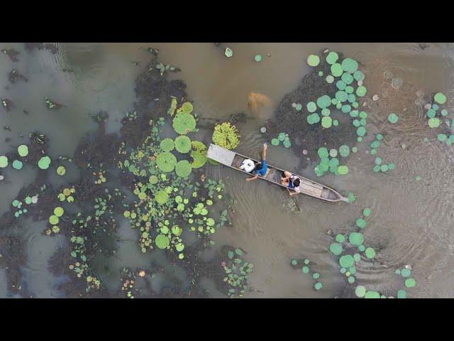 Wetlands of Manipur | Episode 1 | Waithou Punem Pat | Documentary Series | Pothashang