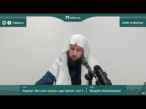 Sahih al-Bukhari | Kapitlet: Det som mjukar upp hjärtat | del 3