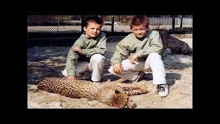Близнецы в зоопарке детский фильм про животных