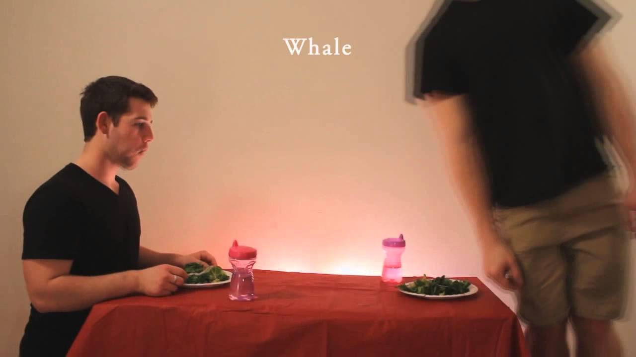 How Animals Eat Their Food - Whale - Remix - YouTube
