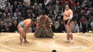 琴勇輝 vs 照ノ富士の取組。琴勇輝は日馬富士に続き、大関も破った。 20...