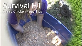 Tips For Reducing Chicken Feed Cost