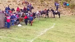 Gambar cover Rodeo campo abierto...