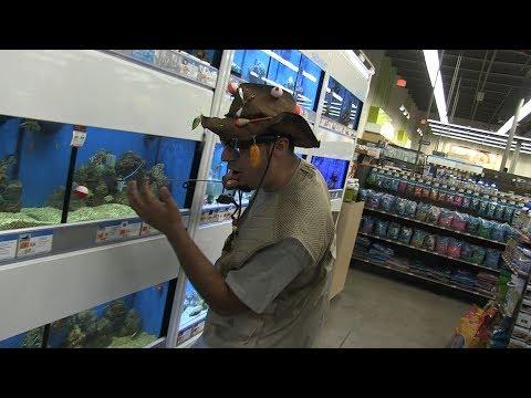 Fishing in Pet Store Fish Tank