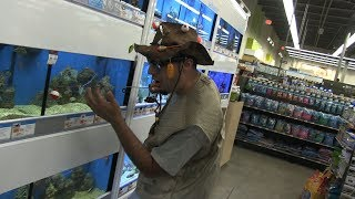 Fishing in Pet Store Fish Tank