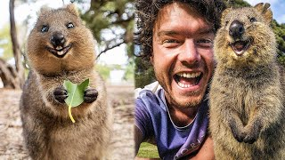 Необычные животные из разных уголков нашей планеты
