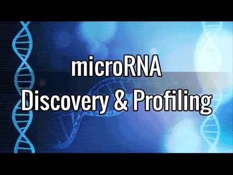 MicroRNA Discovery & Profiling