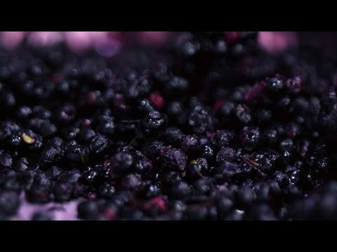 Move Over, Acai. The Maqui Berry Craze Has Arrived