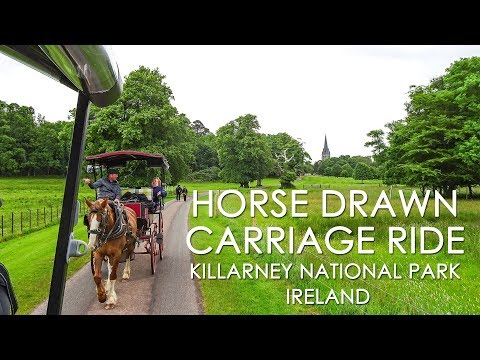 Horse and Carriage Ride in Killarney National Park • Ireland • 2017