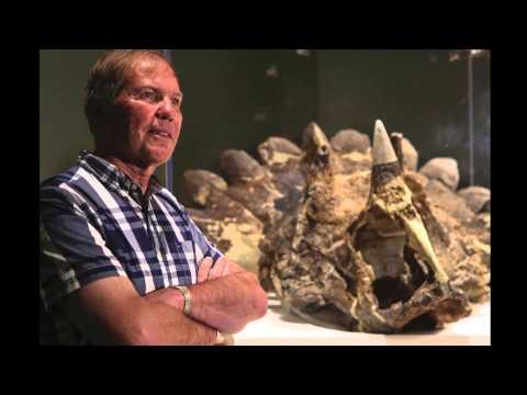 New dinosaur: Regaliceratops peterhewsi