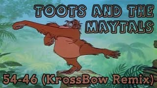 Toots And The Maytals - 54-46 (KrossBow Remix)