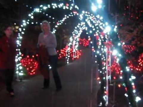 christmas walkway lights
