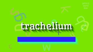 How to say trachelium High Quality Voices