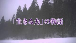 映画『おしん』特報 2013年10月12日(土)全国公開 配給:東映 オフィシ...