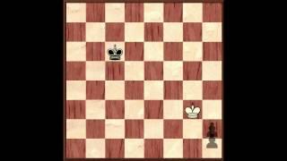 Основы шахматной игры. Часть 3 - Основы эндшпиля