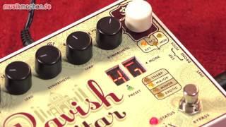 Electro Harmonix Ravish Sitar im Test