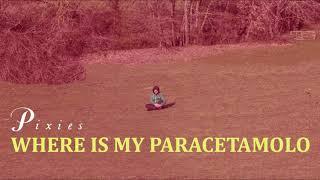 Calcutta + Pixies = where is my paracetamolo (*mashup*)