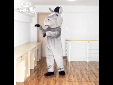 Suit up: New Mustang Horse Mascot Costume