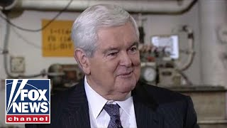 Gingrich: Pelosi's base 'would run over her' to take on Trump
