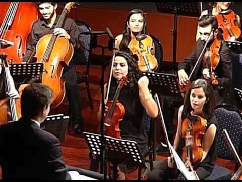YES Lebanon 2016 Festival Orchestra - Divertimento in D Major