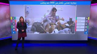 سيدة عمانية تحول بيتها لمأوى لمئات القطط والكلاب المشردة