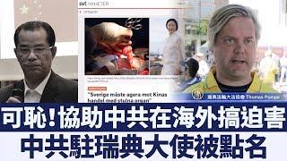 迫害人權、換取利益逍遙海外?中共駐瑞典大使被舉報|新唐人亞太電視|20190711