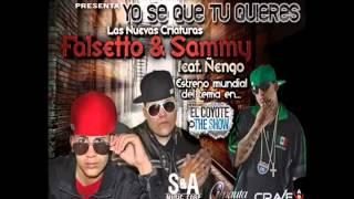 Acapella   Yo Se Que Tu Quieres   Ñengo Flow , Falsetto  Sammy