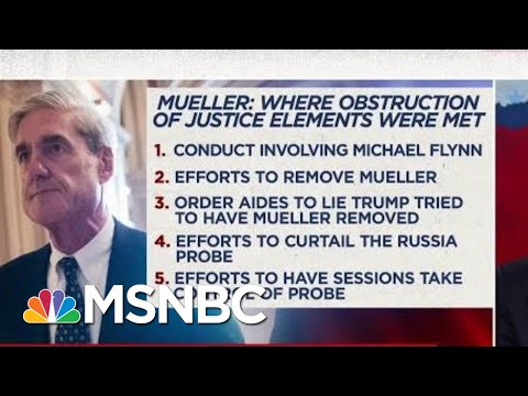 Neal Katyal: Mueller's Evidence Shows Donald Trump Is Impeachable | The Beat With Ari Melber | MSNBC