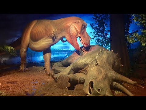 Milwaukee Public Museum - My Personal Hallowed Ground