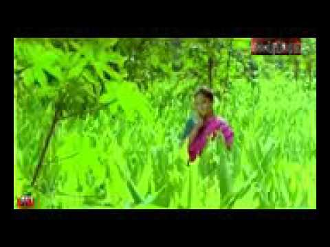 Kucha meguntha ponnu Thamizhachi 4D & HD