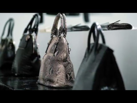 165ee4bd8 Behind That Exotic-Skin Handbag - YouTube